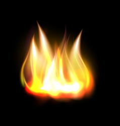 Realistic burning fire flame element vector
