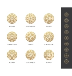 Golden round flower logo set vector