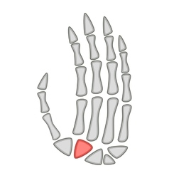 Human anatomy hand palm icon cartoon style vector