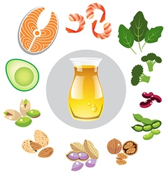 Best sources of omega 3 vector image