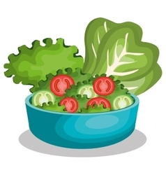 Dish salad fresh icon vector