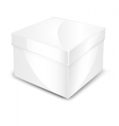 packaged box vector image vector image
