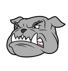 Aggressive bulldog vector