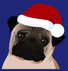 Pug close up in santa cap vector