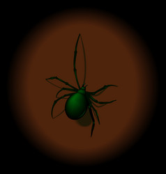 spider with shadow vector image