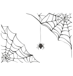 Spiderweb Big black spider web Black scary vector image