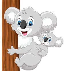 Cartoon baby koala on mother back embracing tree vector