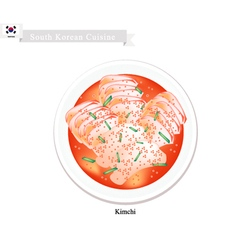 Kimchi or korean salted cabbage with spicy sauce vector