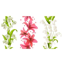 flower borders vector image vector image