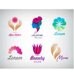set of beauty salon massage cosmetics vector image