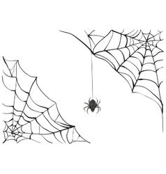 Spiderweb big black spider web black scary vector