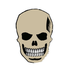 Skull of pirate dead mystery symbol vector