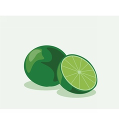 Lime fruits isolated on isolated vector image