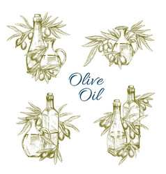 Olive oil bottles sketch icons set vector