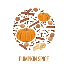 Pumpkin spice on bauble shape thanksgiving vector