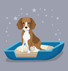 Dog in sand box pet friendly vector