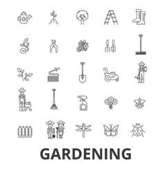 gardening flower garden tools vegetable grass vector image