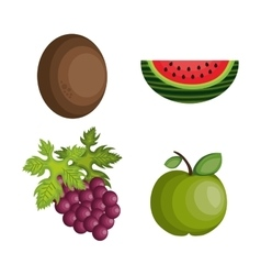 set cartoon fruits tropicals design vector image