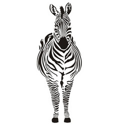 zebra black and zero vector image
