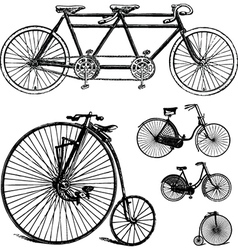 Vintage bicycle set vector