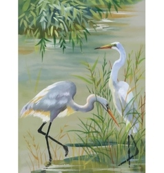 Heron birds watercolor vector