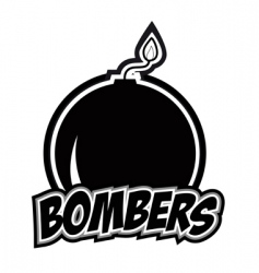 bombers vector image