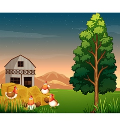 A group of chickens near the hays at the farm vector image