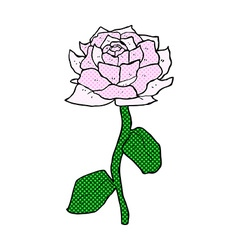 Rose comic cartoon vector