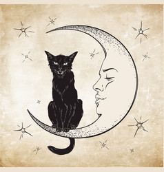 Black cat sitting on the moon wiccan familiar vector
