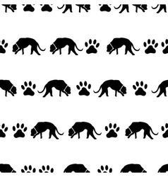 Dog and footprints black shadows silhouette in vector