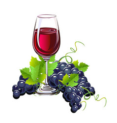 glass of wine and a bunch of grapes vector image vector image