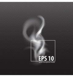 Set of transparent smoke on a plaid background vector image vector image