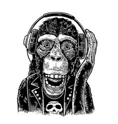 Monkey rocker in headphones and t-shirt with skull vector