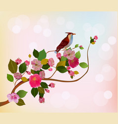 Evening in the garden blooming cherry vector