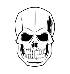 Skull human skeleton vintage pirate symbol vector