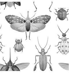 Watercolor beetle pattern vector