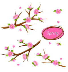 Spring set with branches of tree and sakura vector