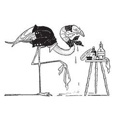 Flamingo vintage vector
