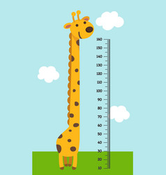 meter wall with giraffe vector image vector image