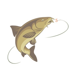 Fish barbel vector