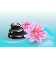Spa stones and lilies vector