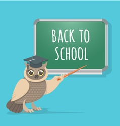 Wise Owl at the School Board vector image