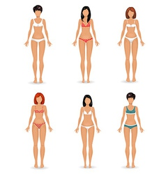 Collection female body template vector