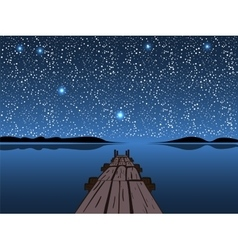 Night lake starry sky vector