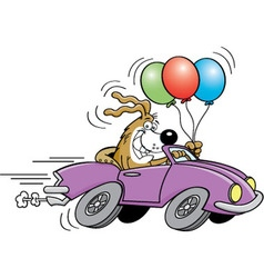 Cartoon dog in an automobile vector