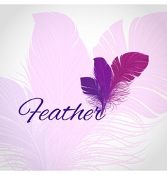 Feather abstract background vector