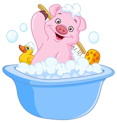 pig taking a bath vector image