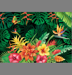 with tropical plants vector image