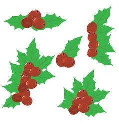 Christmas mistletoe set vector
