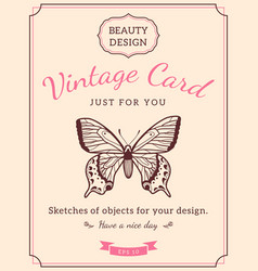 sketch butterfly and text vector image